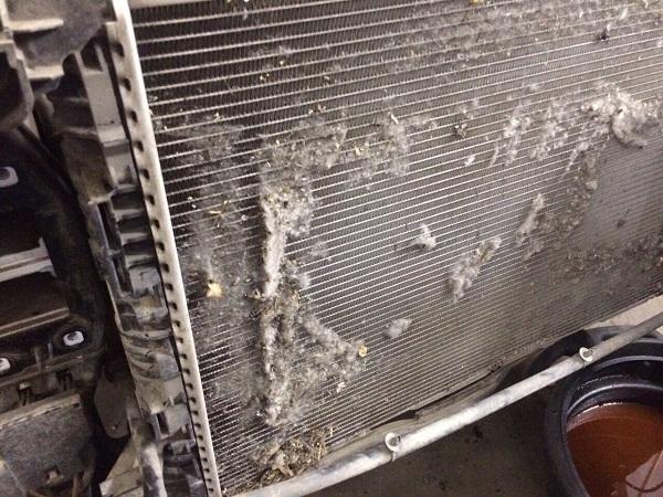 moyka-radiatora-3